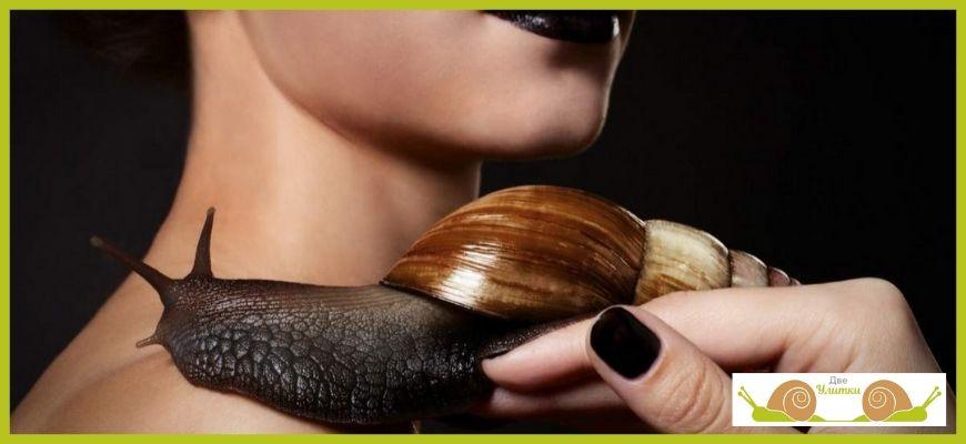 Ахатины в косметологии